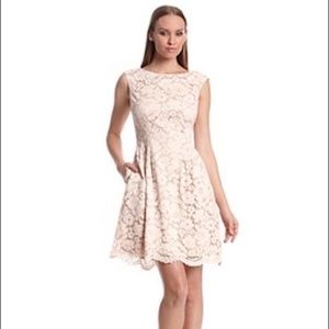 Vince Camuto Blush Pink lace Overlay  Dress 8